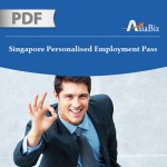 New Changes to Singapore Personalized Employment Pass