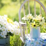 Cheap Gardening Tips and Tricks